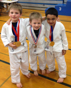 karate classes elk river minnesota