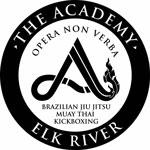 Academy Elk River Logo